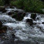 Arroyos de agua cristalina