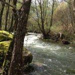 Garganta de agua cristalina - Naturaleza en La Vera
