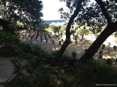 Cementerio Militar Aleman de Cuacos de Yuste