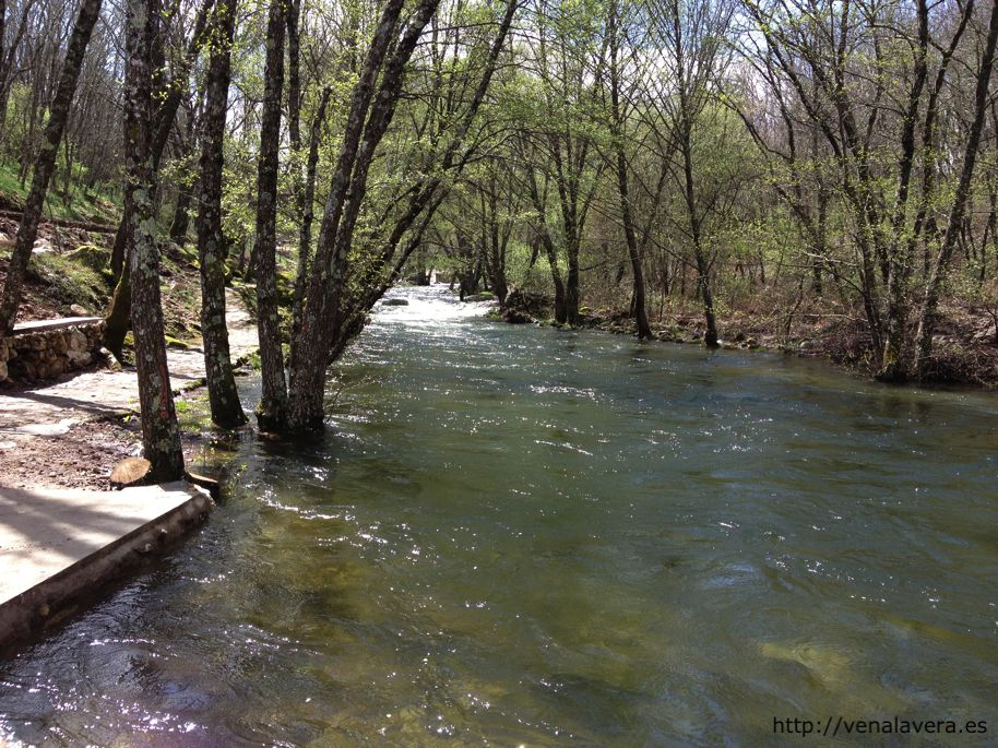 El lago de jara z de la vera ven a la vera for Piscinas naturales jarandilla