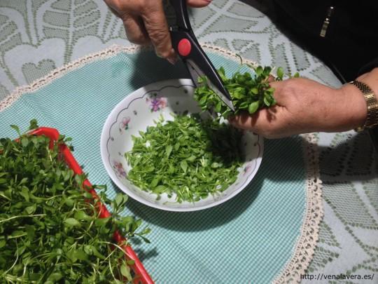 picando las borujas para preparar la ensalada